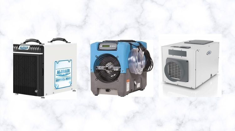 Best Whole-House Dehumidifiers
