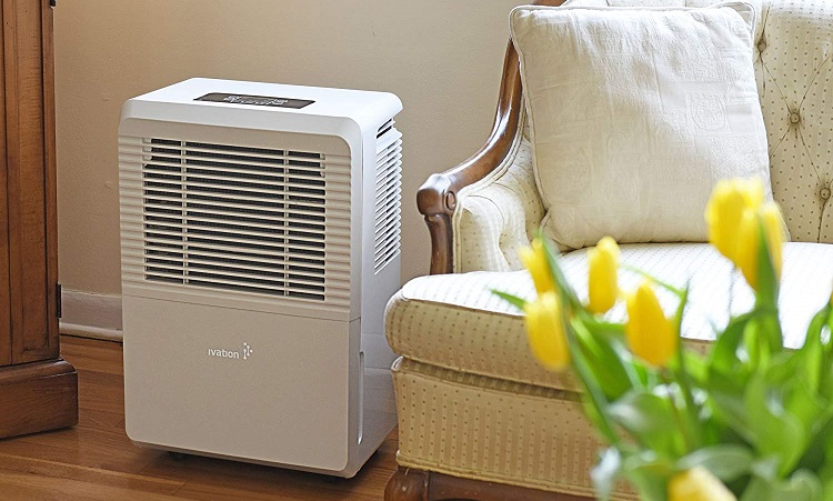 Dehumidifiers Buyers Guide